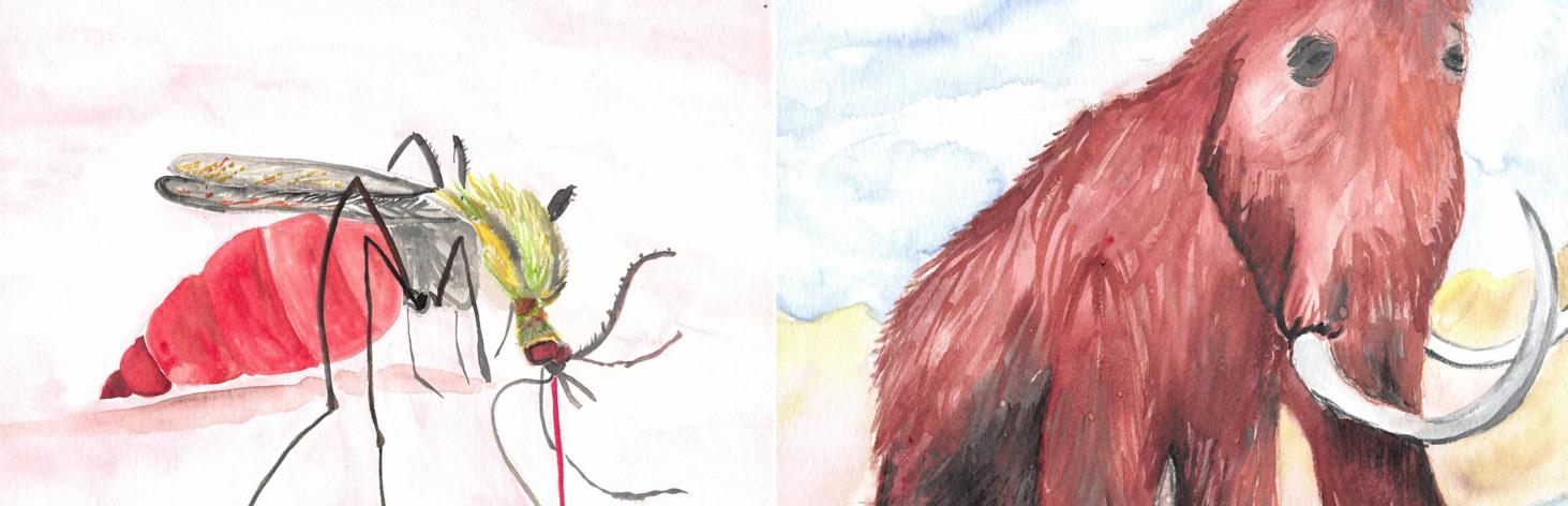 Mammoth&Mosquito
